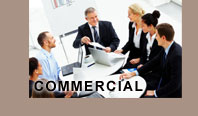 Commercial Insurance Services